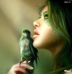 Fairy-Bird