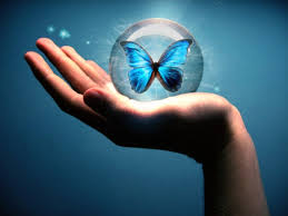 butterfly bubble